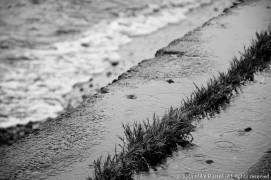 Rainy Day - Concrete and Sound