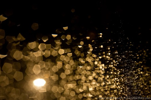 Day 55 - Rainy Bokeh