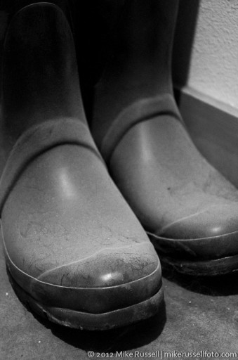 Day 171: Dusty Boots