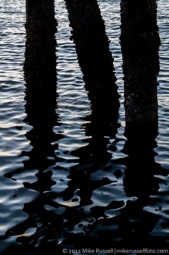 Day 180: Pier Reflections