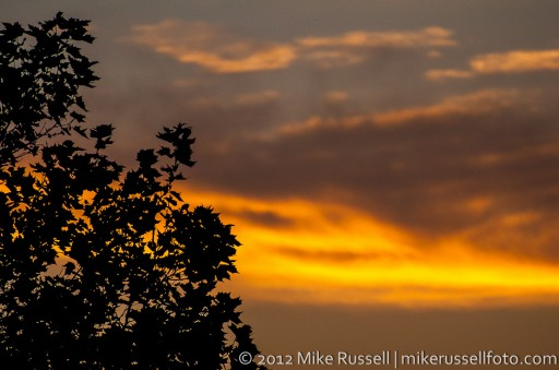 Day 242: Sunset Silouette